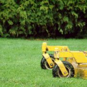 Warmer Weather Requires Yard Pest Control Springfield Mo