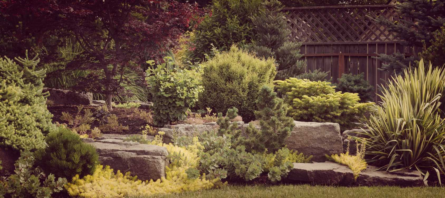 Why hire a professional landscape design company for Professional landscape design