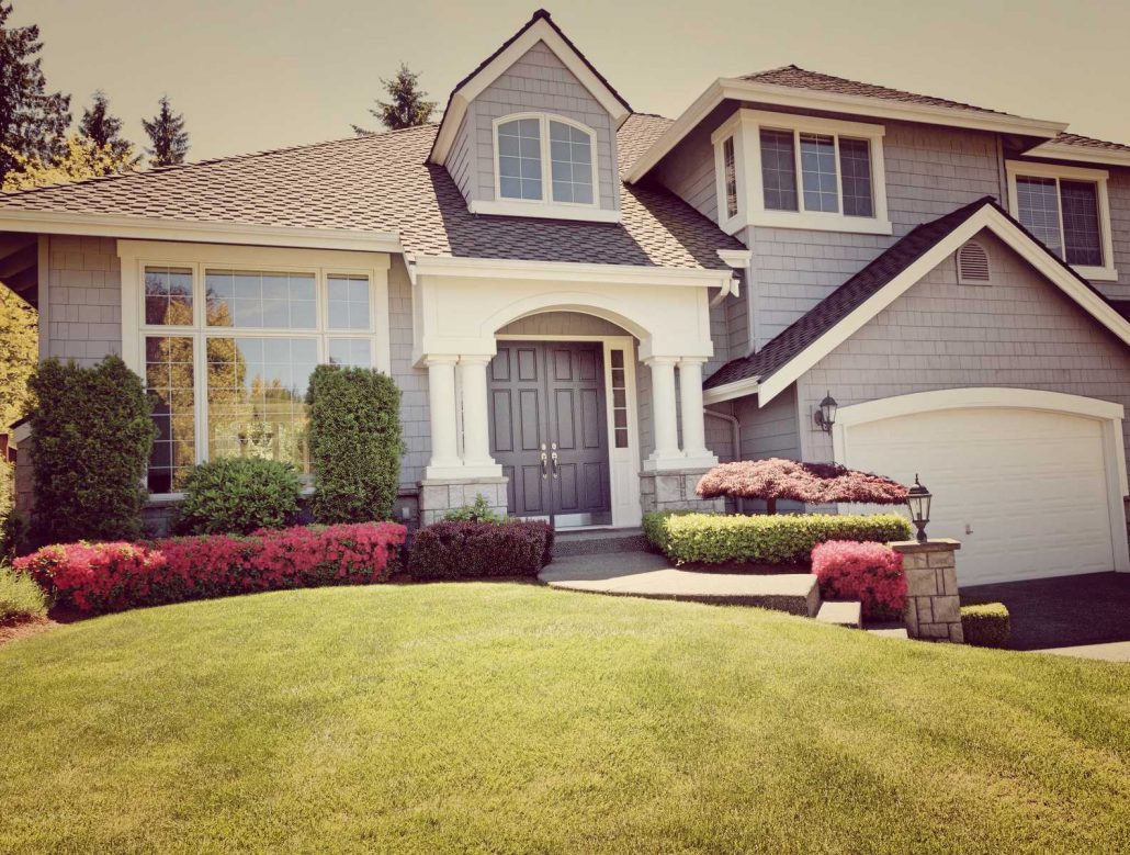 Preventing Fungus And Reducing Lawn Applications