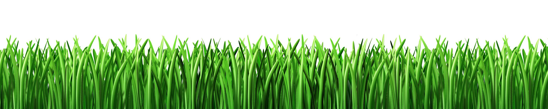 Grass Fertilization Springfield MO