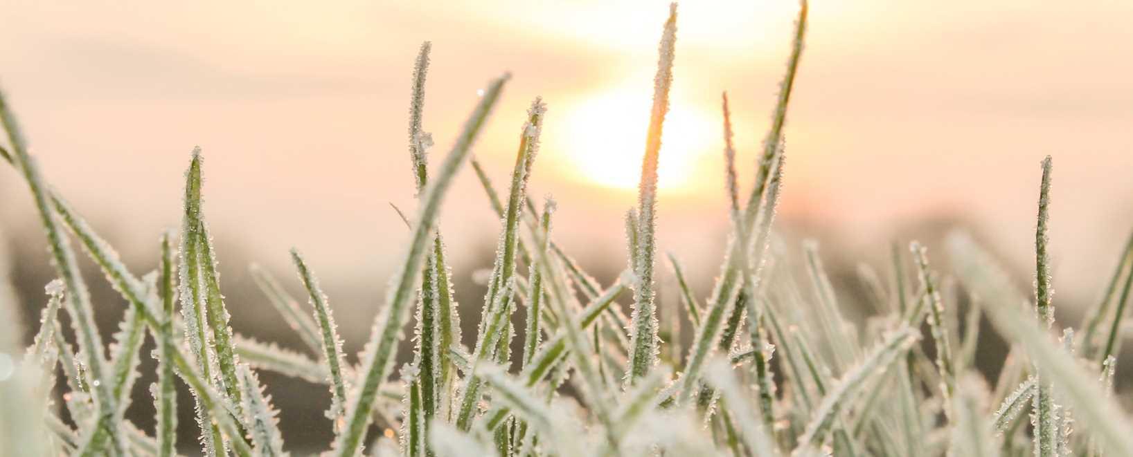 Winterize Sprinkler System - Springfield MO