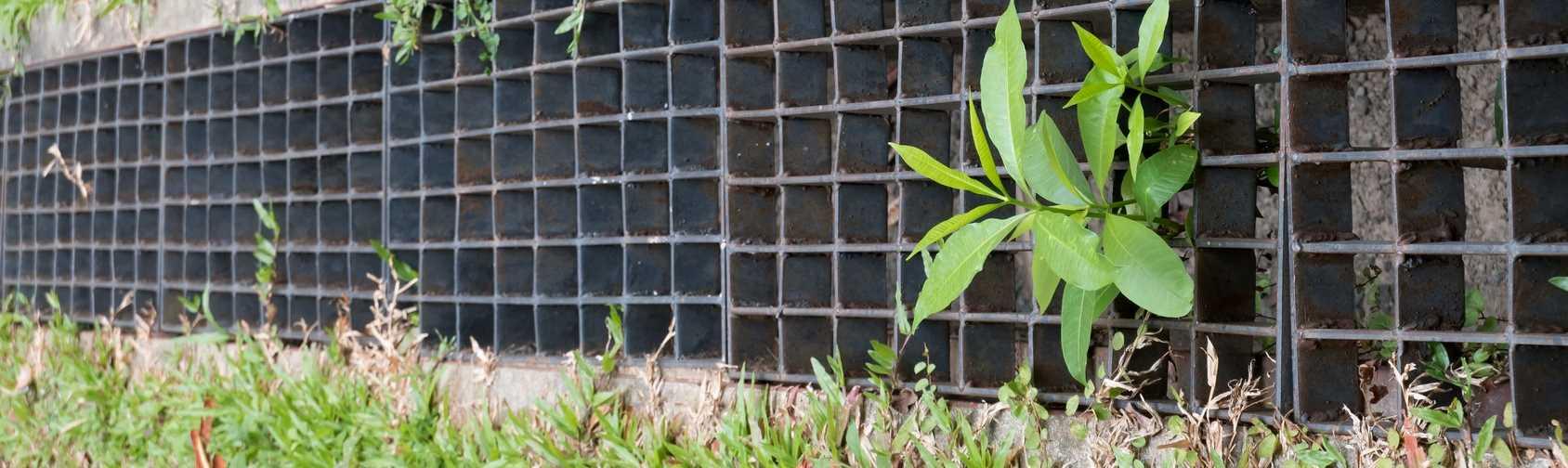 Yard Drainage Systems - Springfield MO