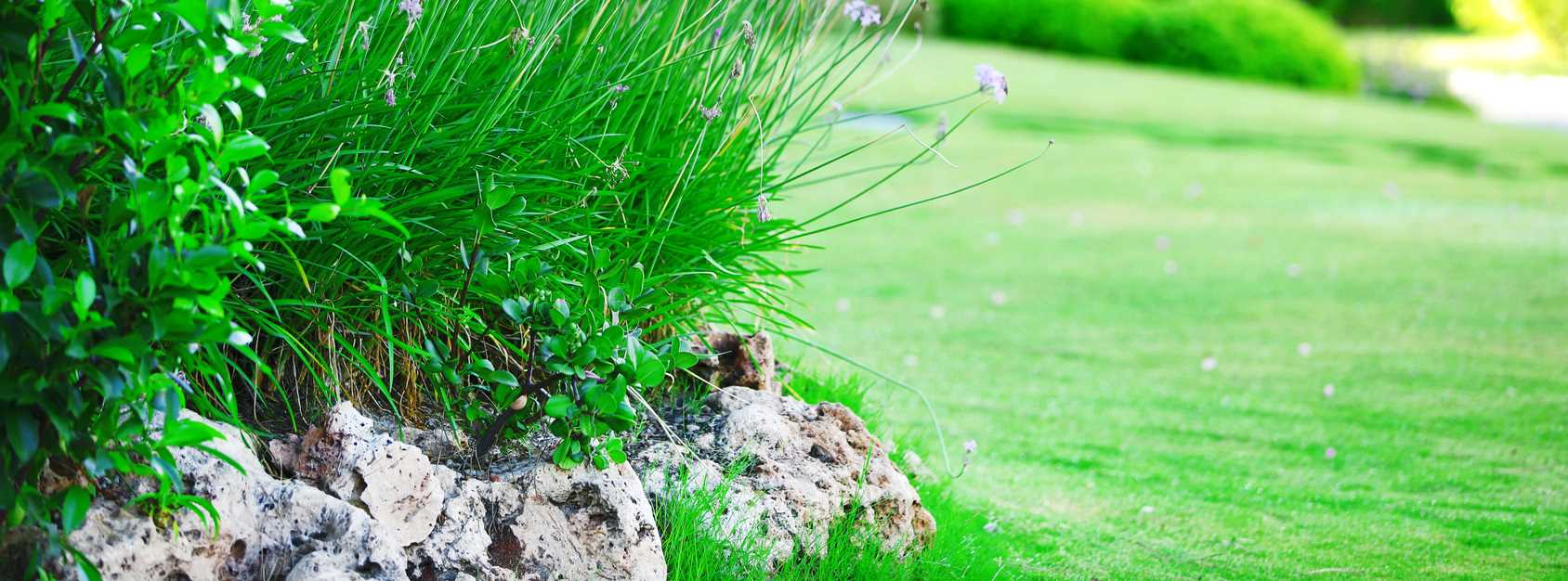 Landscape Maintenance Springfield MO