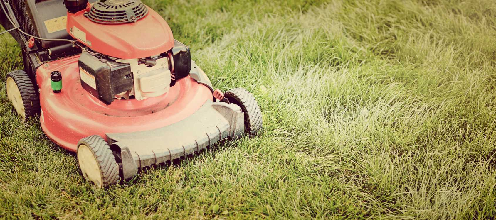 Time-Saving Lawn Care Ideas - Lawn Care Company Springfield MO